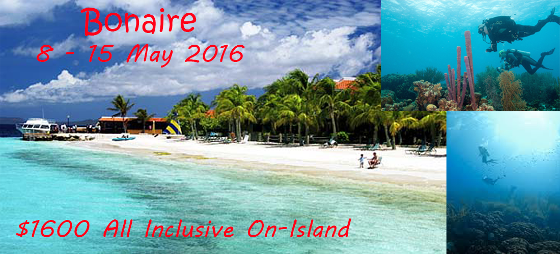 It's Time -- to experience the Dutch Antilles!