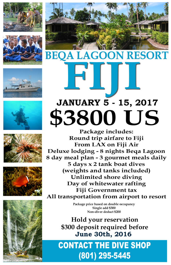 Fiji January The Dive Shop - The 8 best places to travel in january 2016